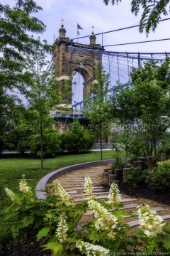 Roebling Bridge from Smale Park
